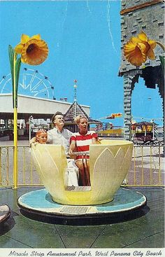 Tea Cup ride at Miracle Strip Amusement Park, Panama City Beach Florida. by stevesobczuk, via Flickr