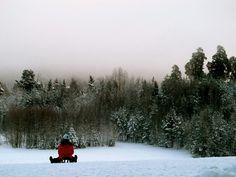 #sweden; uppsala; #winter, #frozenfog