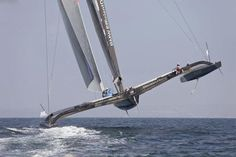 Catamaran  ...   =====>Information=====> https://de.pinterest.com/brettkotzian/sailing/