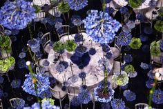 British flower designer Rebecca Lewis - Lowe was probably a bit boring with flower arrangements differential in nature and is especially refreshing concept emerged: straight bulk flowers hanging from the ceiling.