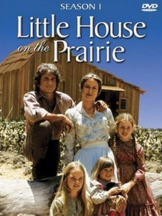 Little House on the Prairie. I'd like to collect these for my girls. One of the only tv shows we were allowed to watch as kids, and how we loved them!