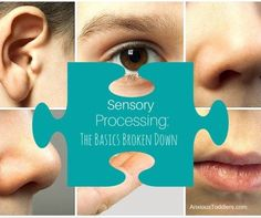 What is Sensory Processing?  The basics broken down!
