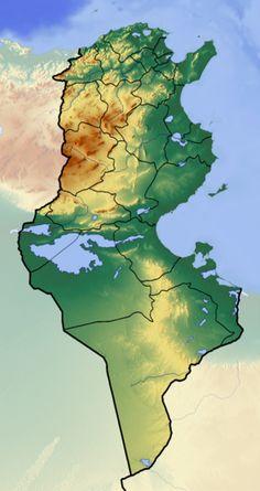 Voir la carte topographique deTunisie