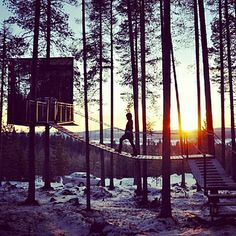 #NEWS #SWD #GREEN2STAY Tree Hotel in Harads, Sweden | 16 Hotels That Are So Cool You'll Want To Stay Forever