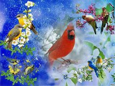 Pretty Birds, Cardinals, Red, Painting, Animals, Beautiful Birds, Animales, Animaux, Painting Art