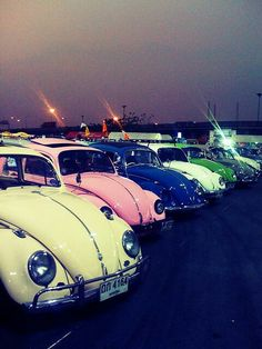 vw beetles - I want one! Not sure they do 7 seater ones though :(