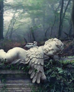 Baby angel / cherub statue in a cemetery Cemetery Angels, Cemetery Art, Cemetery Statues, Angels Garden, Angel Garden Statues, Statue Ange, I Believe In Angels, Ange Demon, Angels Among Us