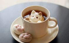 Cat Marshmallow