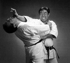 Glossary of Kyokushin Karate Terms Kyokushin Karate, Roundhouse Kick, International Health, English Alphabet, Kendo, Living Legends, Wing Chun, Aikido, Kung Fu