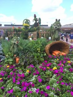 Today, we walked around the 2015 Epcot Flower and Garden Festival at Epcot. Here are a few pictures I wanted to share with you.