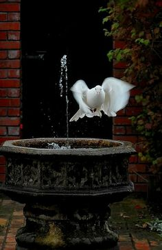 Sweet Holy Spirit & Fountains of Living Water...