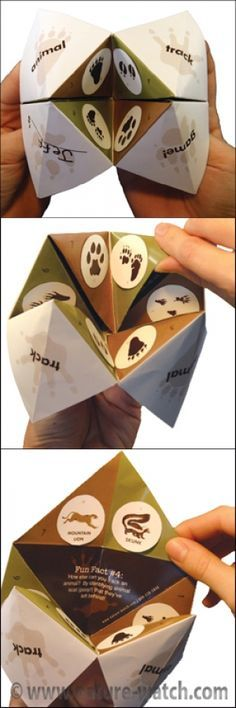 """Nature Watch has done it again! Remember playing with """"Fortune Tellers"""" or """"Cootie Catchers"""" (as many of us called them) when we were kids? We have taken that concept and created a completely original craft/game designed to teach children about Animal Track Identification. Nature-Watch Activity Kits are fantastic! Each kit includes a unique, hands-on project for each participant to """"make and take"""", reinforcing the learning experience. Our kits come with ..."""