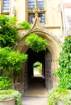 oxford university archways - Google Search Arches, Oxford, University, Google Search, Bows, Arch, Oxfords, Colleges