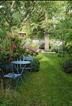 la bella RASTRELLO-grandiosa-Inverno festa! Top uno splendido giardino BONSAI