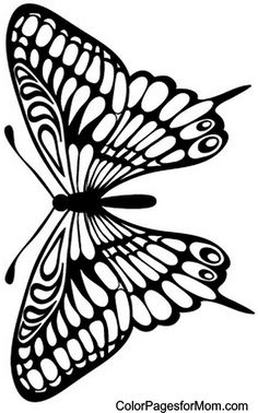 Advanced Coloring Pages for Adults - Butterfly Coloring Page. Butterfly Coloring Page, Butterfly Drawing, Butterfly Crafts, Butterfly Stencil, Butterfly Quilt, Butterfly Images, Butterfly Mobile, Colouring Pages, Adult Coloring Pages