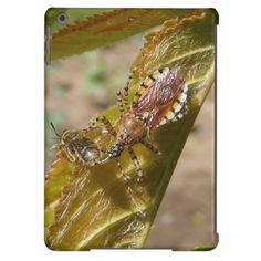 Assassin bug ~ iPad Air case ~ Assassin bug 'Pselliopus' nymph with small bee for lunch on young cherry leaf.
