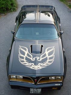 This was the car that made me fall in love with American muscle cars so many years ago. Daddy had a baby blue trans am and the first time I saw a picture I was obsessed.