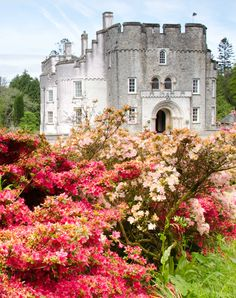 Picton Castle and Gardens | Gardens Illustrated. My 13th gr-grandmother, Jane…