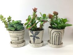 ONE Minimalist Flower  Pot by LaPellaPottery on Etsy