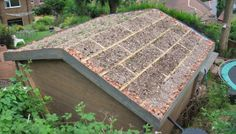 Pitch roof ready for Sedum planting