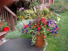 pretty potted flowers idea