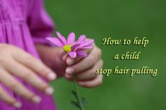 Anybody with a hair pulling child knows that trying to stop them can end in conflict.  Distraction is key and there is expert help at hand.