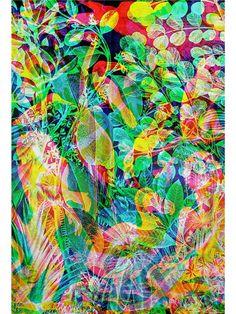 Jaguarshoes Collective - Carnovsky 'La Selva - Notturno' Artwork