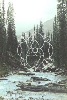 La Dispute logo
