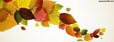 Get our best Fall Leaves facebook covers for you to use on your facebook profile. If you are looking for HD high quality Fall Leaves fb covers, look no further we update our Fall Leaves Facebook Google Plus Tumblr Twitter covers daily! We love Fall Leaves fb covers!