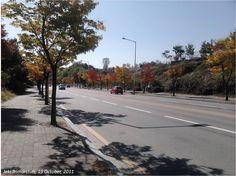 Chuncheon: Walk and Then Walk Again. By Jeki Trimarstuti.