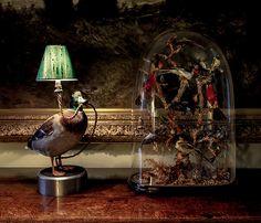 The Duck Desk Lamp