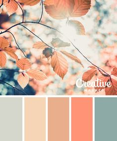 15 Downloadable Color Palettes For Fall ~ Creative Market Blog