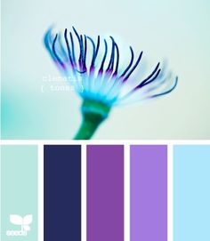clematis tones by jean    color combo