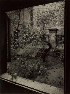 Josef Sudek, The Window of my Studio - Spring in my Garden, Prague, 1954.