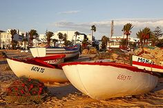 Fishing boats by the harbour, Hammamet, Tunisia, North Africa, Africa