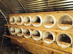 nest boxes - not only would this be great   for chickens, but for cats too!!