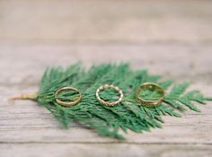 ring shot idea (fir tree branch) - Charming & Intimate Northern Michigan Wedding by Merrymakers (Planner) + Annie Parish Photography - via Magnolia Rouge