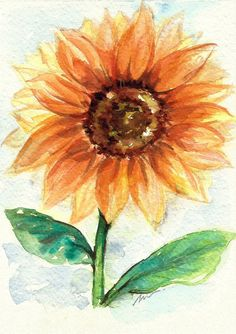 Sunflower Original Watercolor Painting Floral by NuFineArt5
