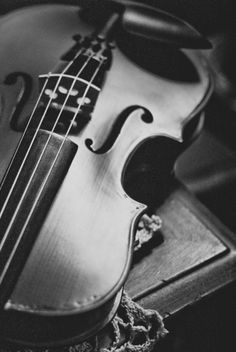 When I was in elementary school, I played the violin. I played for my school along with about 100 other students. We always had trips to lavish places so we could perform. I regret not continuing on in my later years.