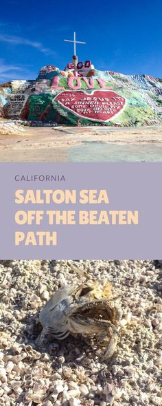The Salton Sea is just a quick day trip from Palm Springs and Los Angeles. This trip is off the beaten path but is quite awe-inspiring and educational. You can see Bombay Beach, Salvation Mountain, and other ghost towns of California.