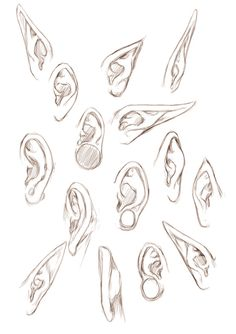 Ear Drawing Reference | Drawing References and Resources | Scoop.it