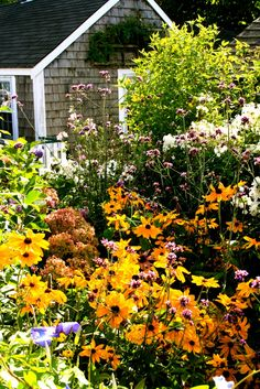 Cottage Garden. Sconset, Nantucket. I want to live in Nantucket.