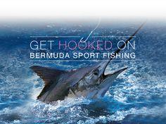 Get Hooked On Bermuda Sport Fishing