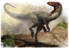 Sinosauropteryx prima: Early Cretaceous (124.6 – 122 Ma): Theropoda: Discovered by Ji & Ji, 1996: Artwork by Cheung Chung Tat