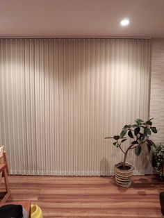 Casa Top, Curtains With Blinds, Room Interior, House, Image, Home Decor, Vertical Window Blinds, Vertical Blinds Cover, Trendy Tree