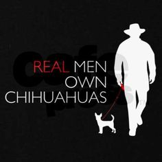 Real men own chihuahuas.  Ted own's 4 so what does that make him???   =)