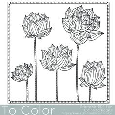 Youll enjoy coloring this lotus flower floral PDF coloring page from To Color. This set of flowers coloring page design is perfect for adults looking for