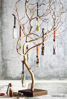 Tree branches to display handmade products at a craft fair. Small items, jewelry, accessories, ornaments, etc.