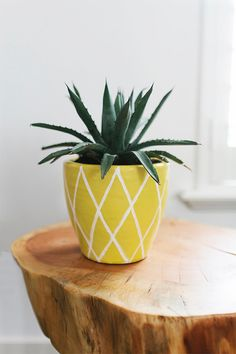 Hey guys! I'm over on Bali Blinds today, sharing some DIY projects that I want to try this summer. One of my favorite ideas was this DIY pineapple plant pot. It's so cute, clever, and easy to make--pl