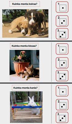 Tarinassa lasketaan suloisia eläimiä, joita on kuvassa 1, 2 tai 3.